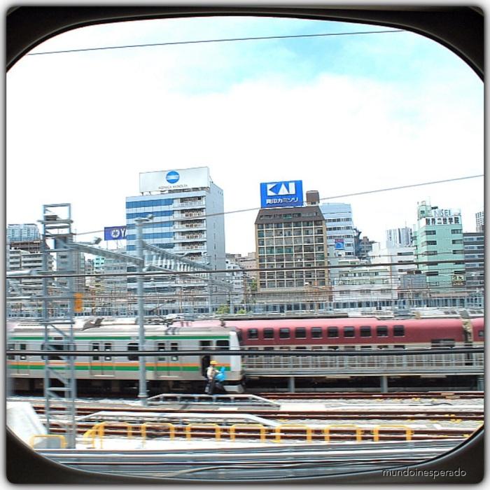 20140521-182540.jpg
