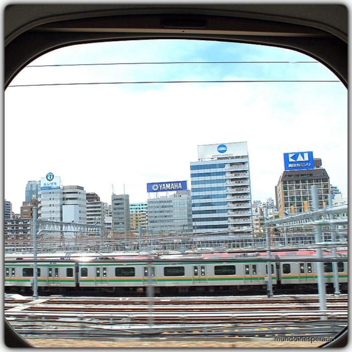 20140521-183137.jpg